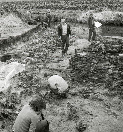 1986 09 18. Kernavė. Archeologiniai tyrimai. Fotografas Alfredas Pliadis