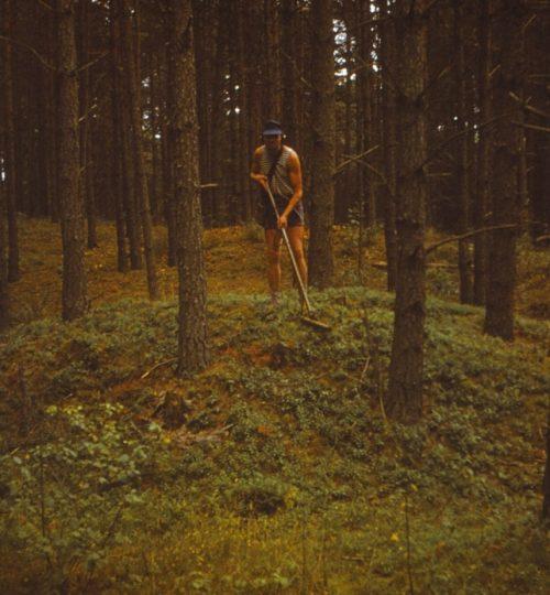 1983 m. Liudvikas Dzikas, Kernavės pilkapynas. Fotografas A. Luchtanas